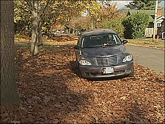 Use caution when placing leaf piles in street