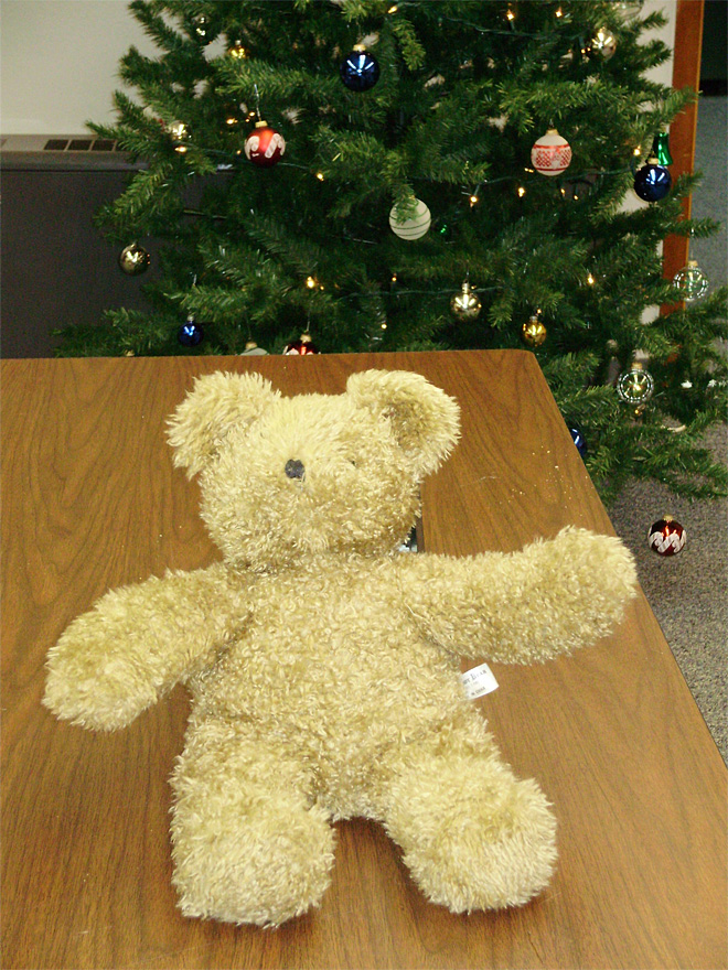 'Bomb' bear will go to a good cause
